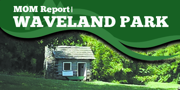 Mom Report WavelandPark