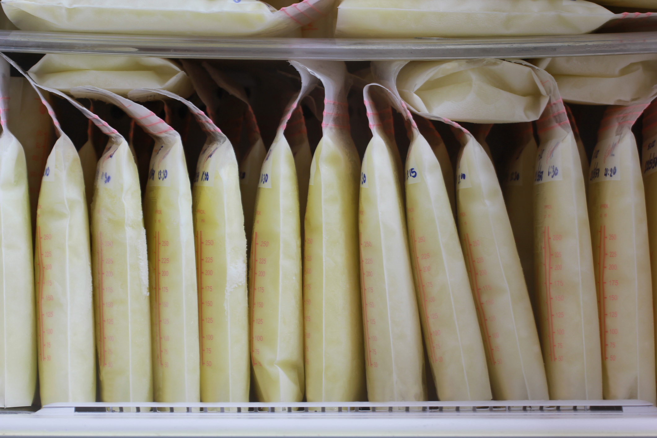 breast milk storage bags for new baby in refrigerator